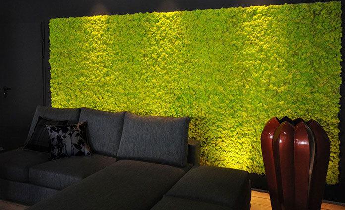 Las w środku biura lub mieszkania? Wpuść mech na swoją ścianę!