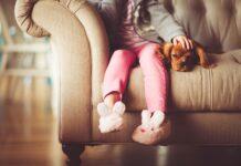 Kryteria wyboru maty chłodzącej dla psów